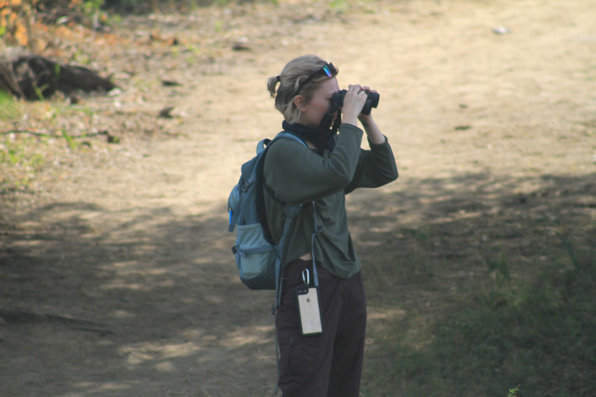 Birdwatching in Keoladeo National Park in India