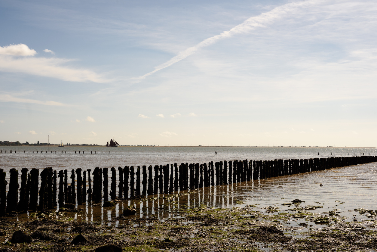 Wooden Beach Defences at Cudmore Grove Mersea