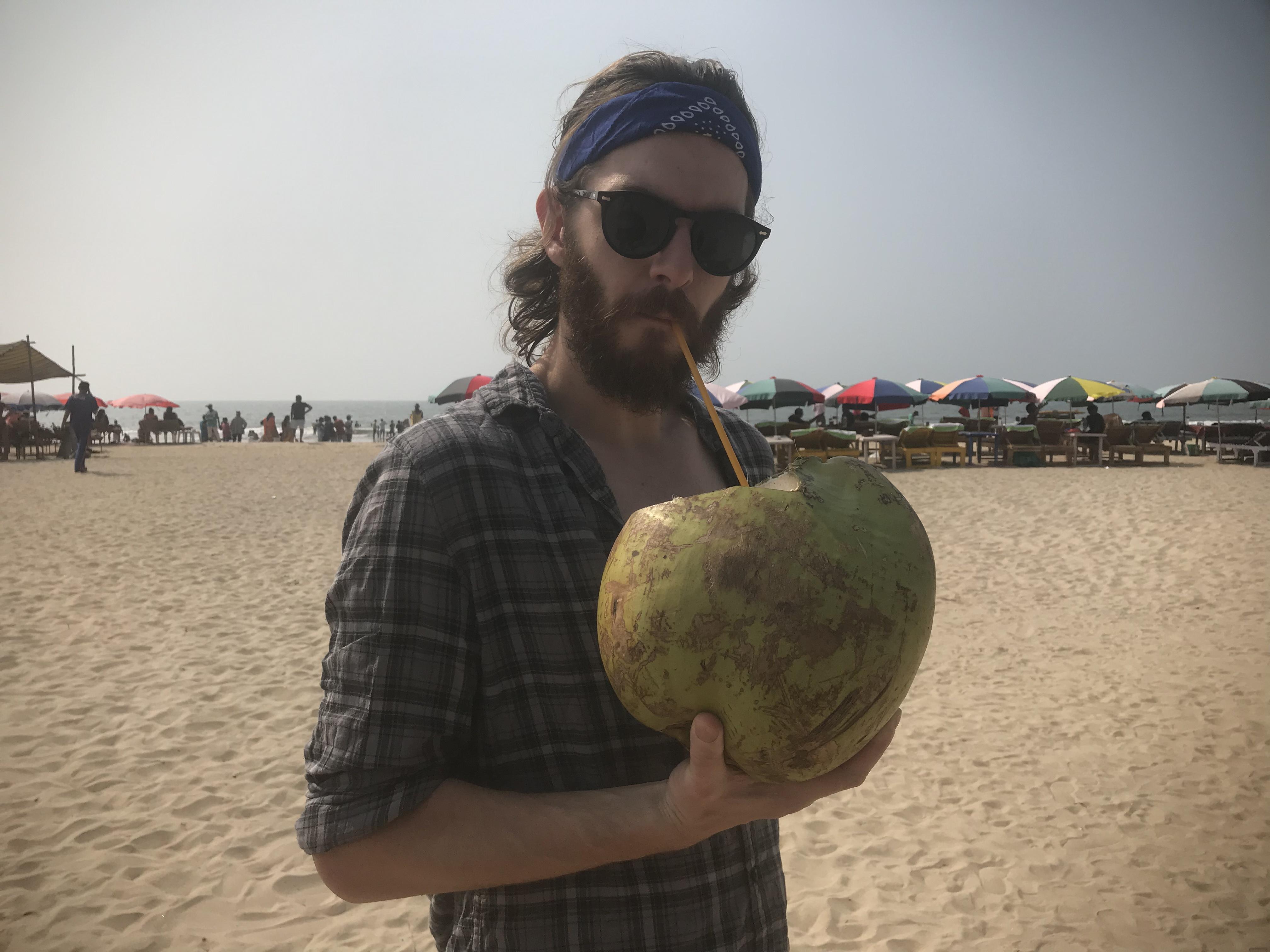 Giant coconut, Goa