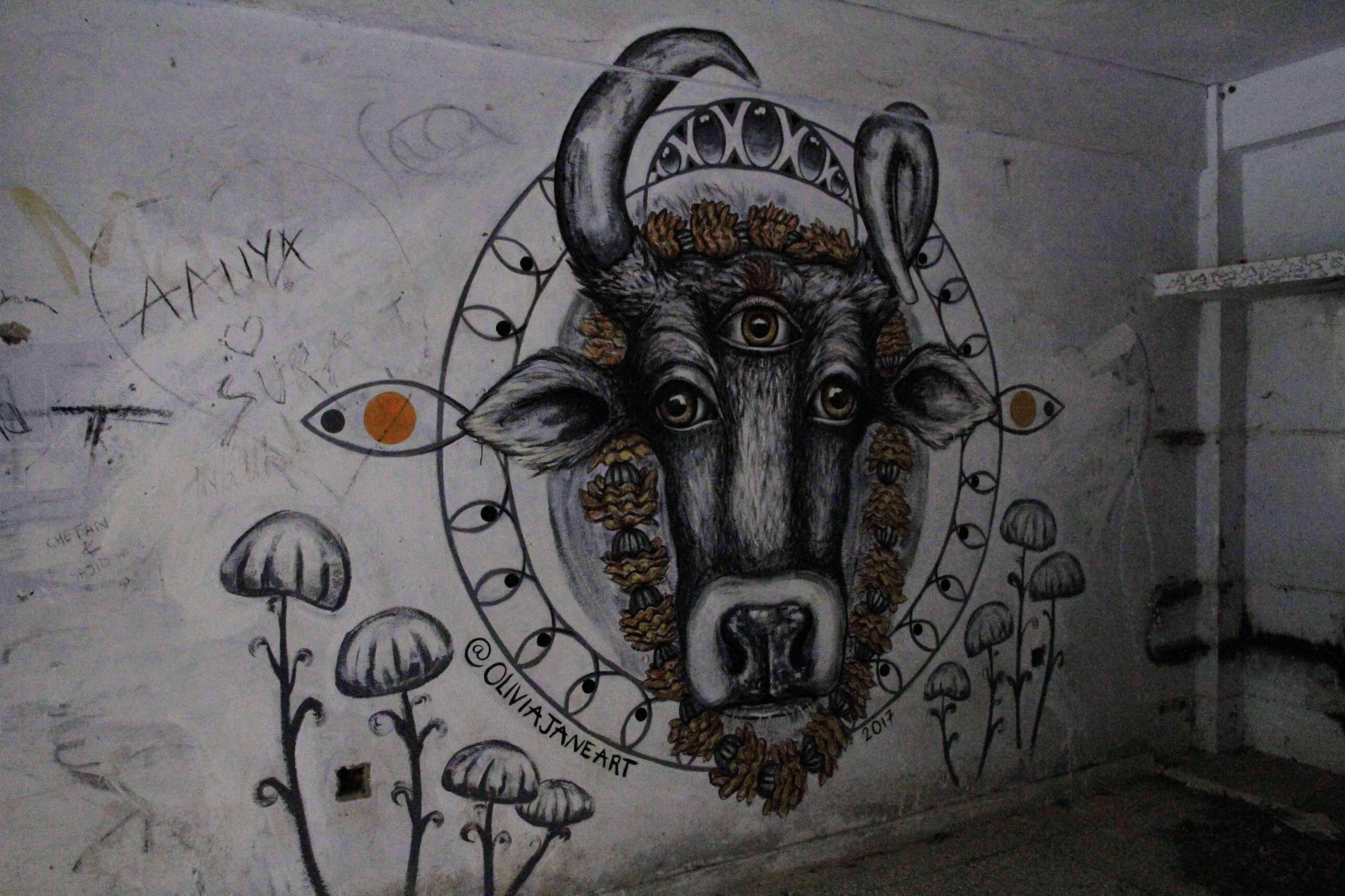 Cow graffiti in the flats, The Beatles Ashram, Rishikesh