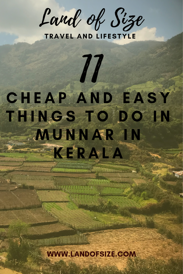 11 easy and cheap things to do in Munnar in South India