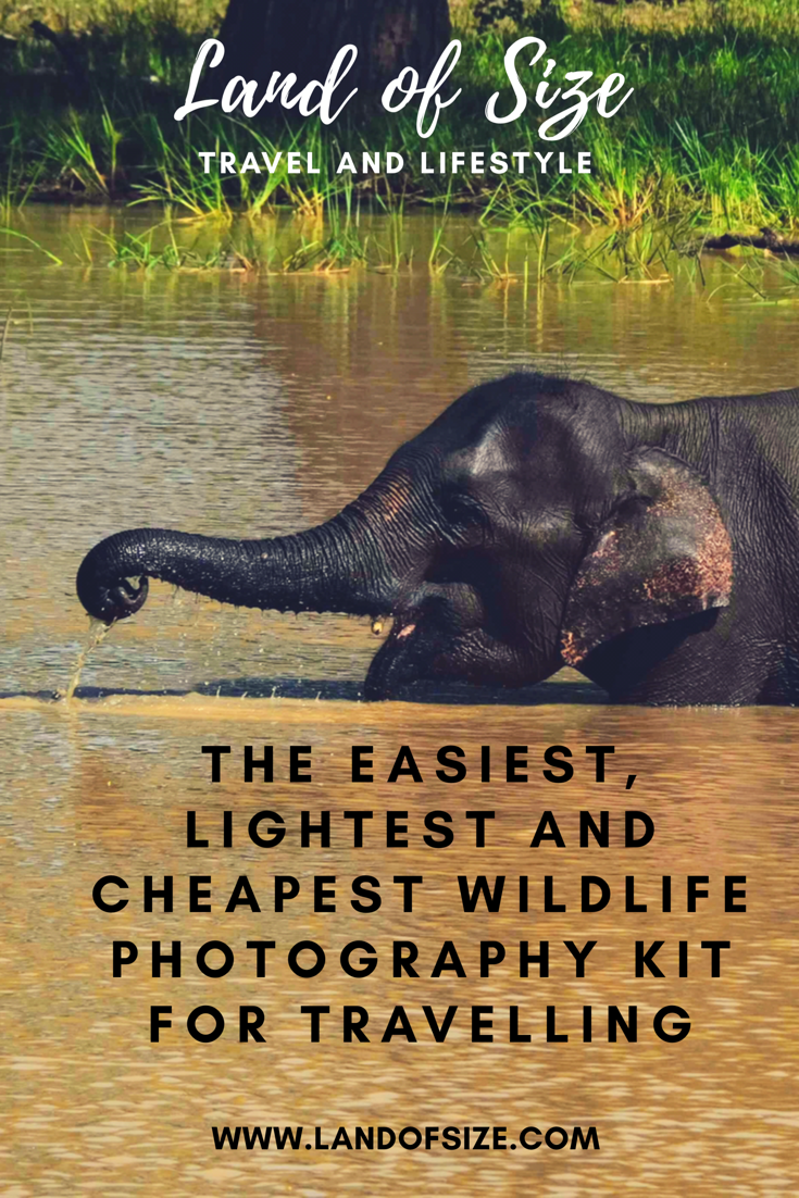 The easiest, lightest and cheapest wildlife photography kit for travelling