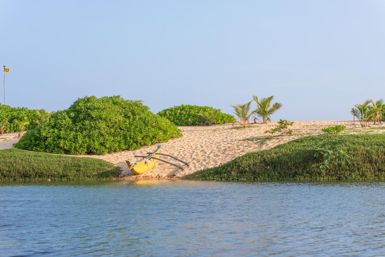 Rekawa Beach, Sri Lanka