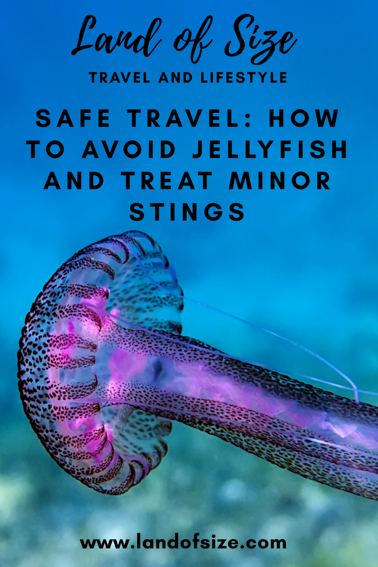 Safe Travel: How to avoid jellyfish and treat minor stings