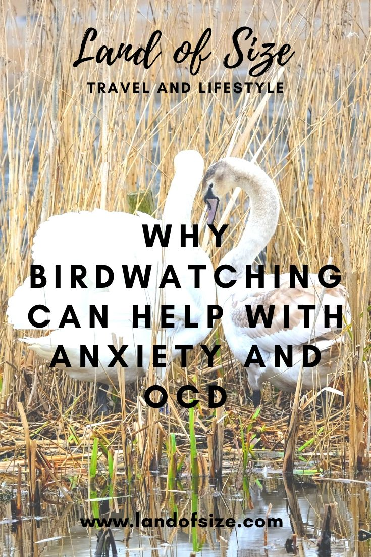 Why birdwatching can help with anxiety and OCD