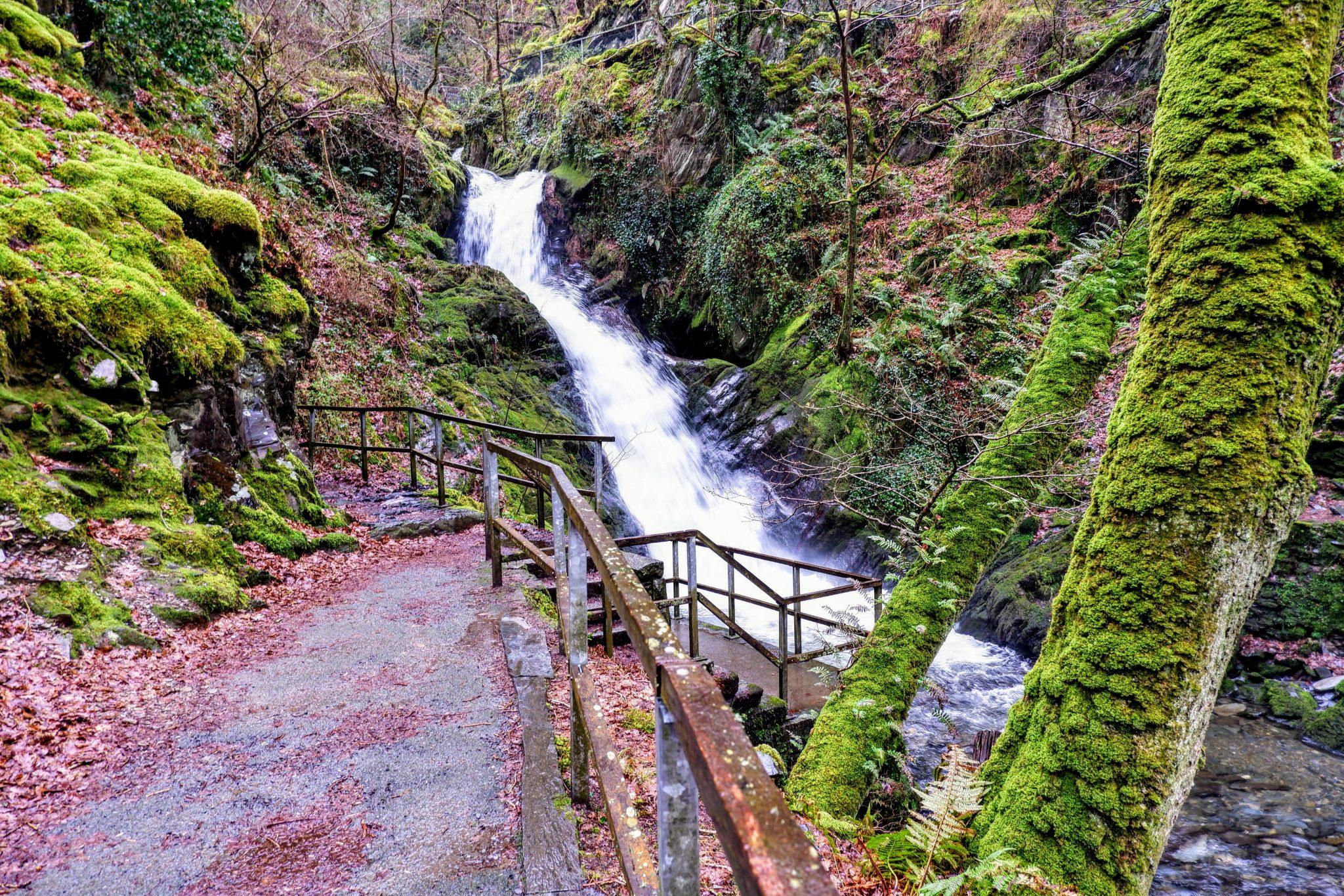 Dolgoch Waterfalls, Bryncrug, Wales